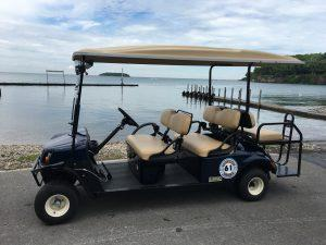 Put in Bay Golf Cart