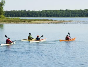 Bottom Line: These Are the Best Put-in-Bay, Ohio, Kayak Rentals