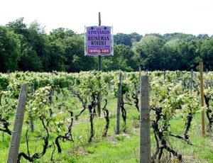 Heineman Winery Tours