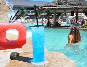 Swim Up Bar: Mist